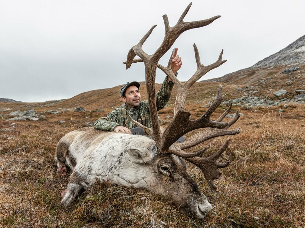 Andrew McKean kneeling next to a giant caribou.