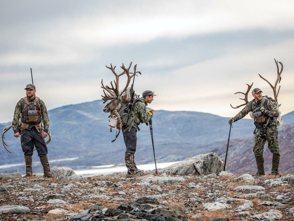 A trio of caribou hunters waiting on a hillside.