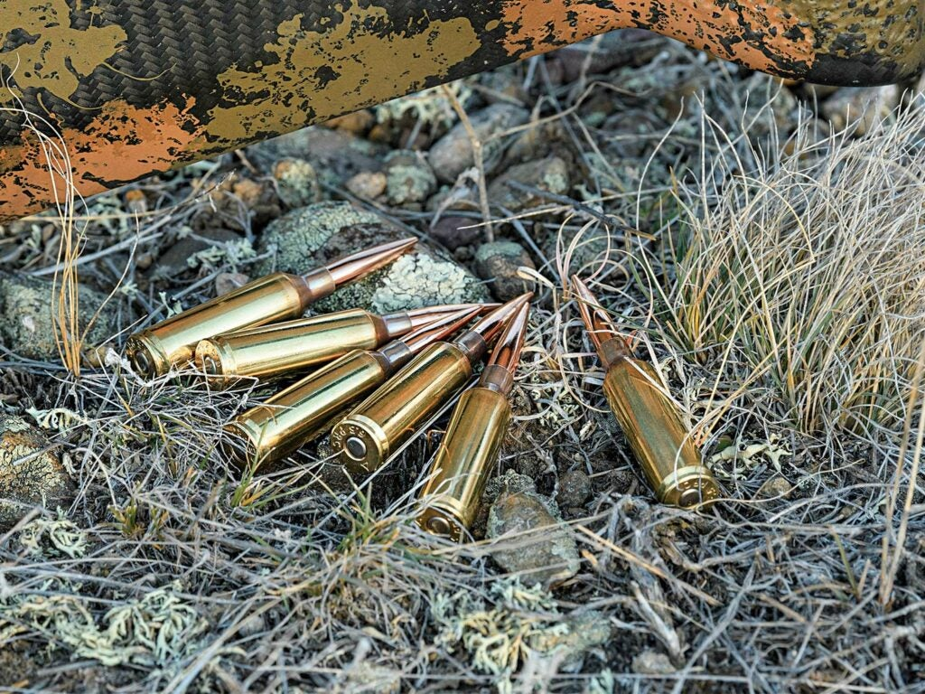 A pile of handloaded ammo on the ground.
