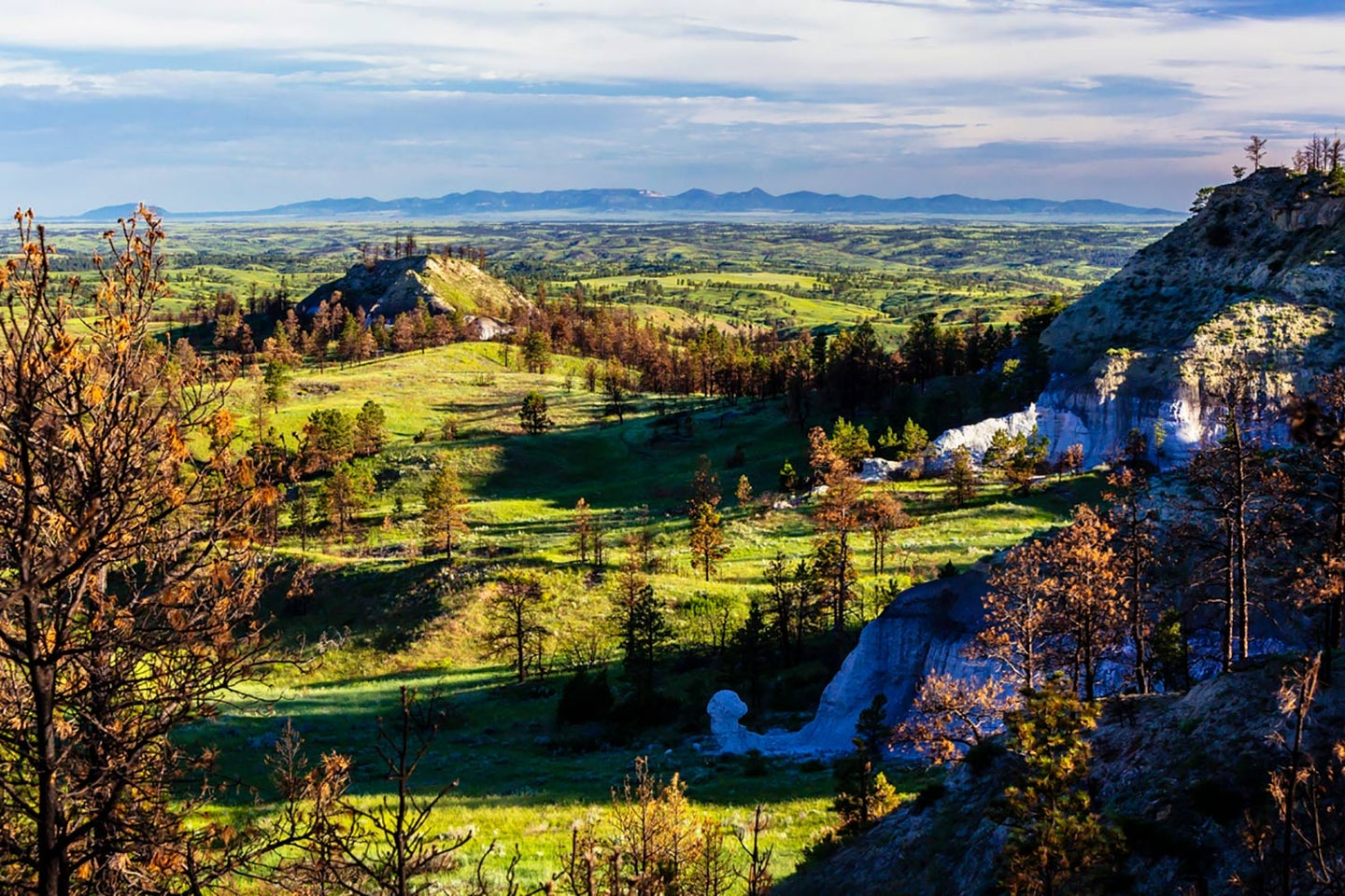 A new Backcountry Conservation Area is being proposed near Lewistown, Montana.