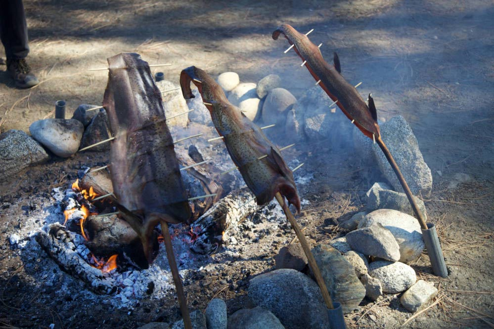 Fish cooking on an open fire.