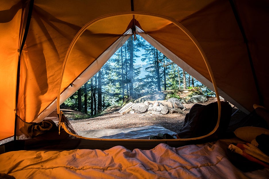 the view outside of a camping tent.