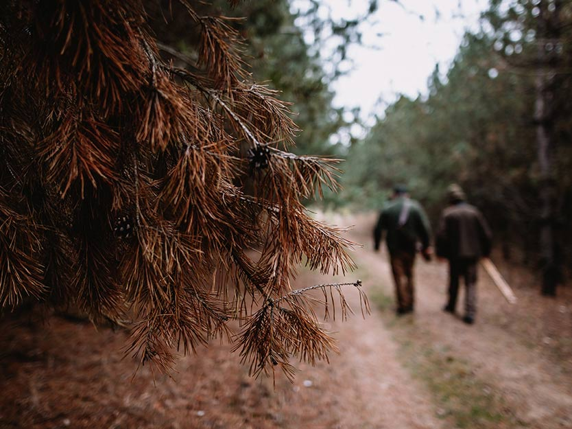 Two hunters walking down a country road.