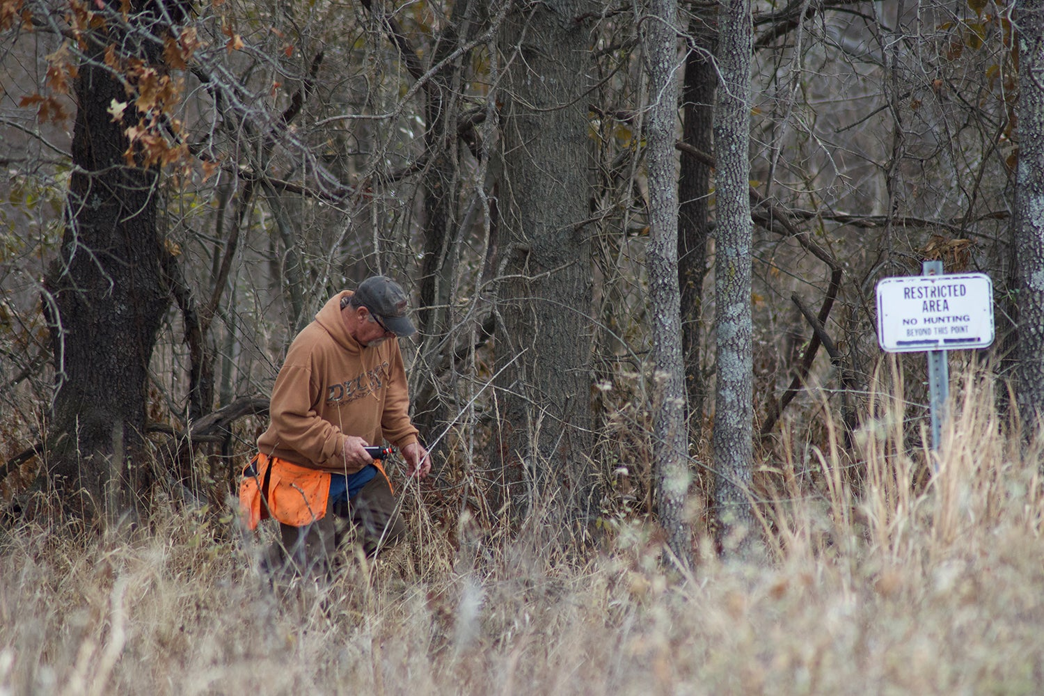 Hunter in a field at a woodline.
