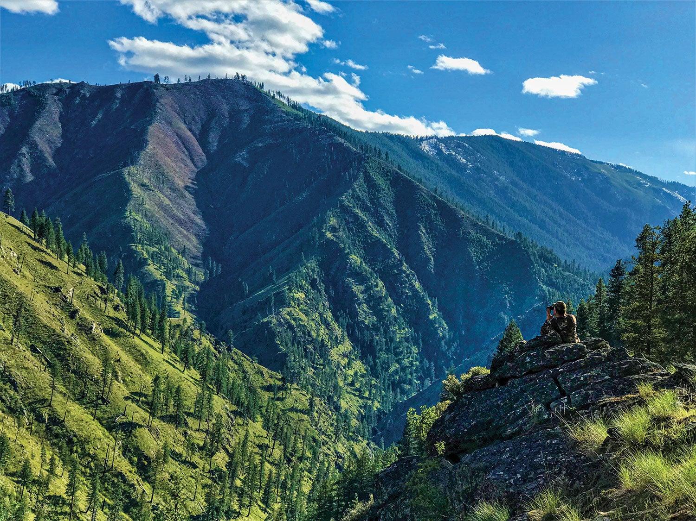 Idaho's Selway mountain range