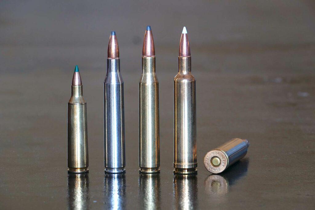 Lineup of long range shooting bullets.