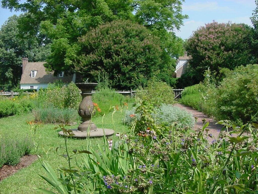 An outdoor garden.