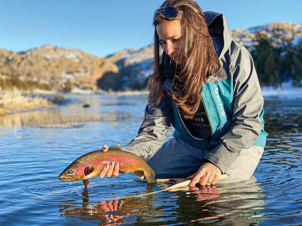 Female angler releasing a rainbow trout in Wyoming's North Platte river.