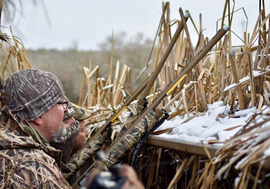 Hunter aiming shotguns in a hunting blind.