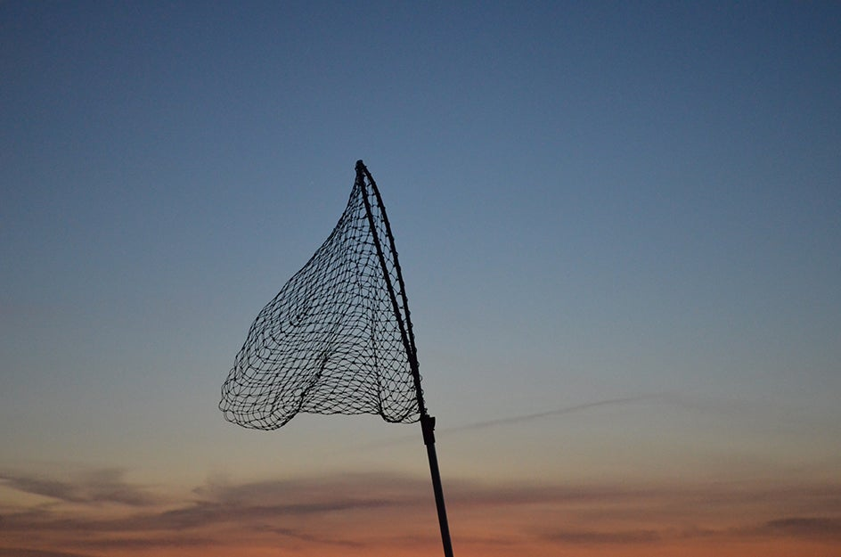 fishing net in the air