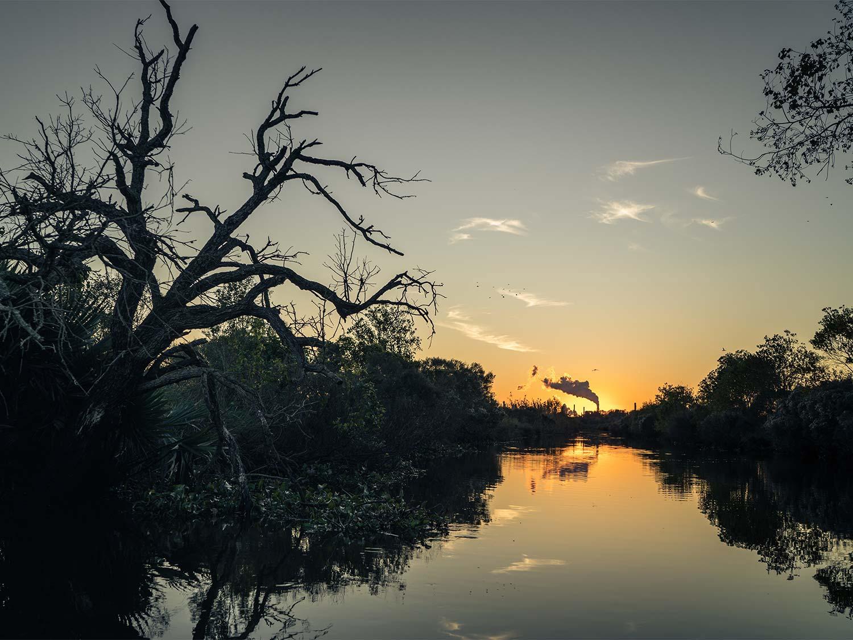 Twilight in the Louisiana delta.