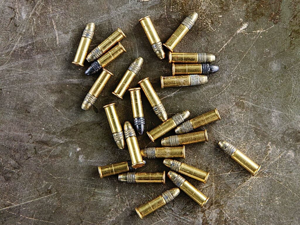 Many .22 LR rifle rounds.