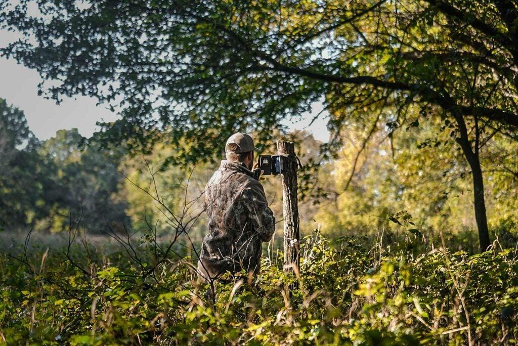 Hunter checking a trail camera in a field.