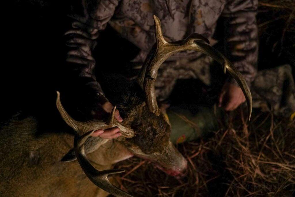 a hunter kneeling by a buck.