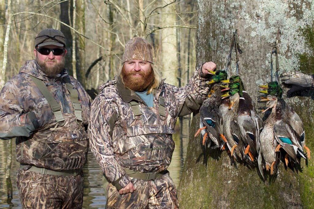 duck hunters and mallard ducks