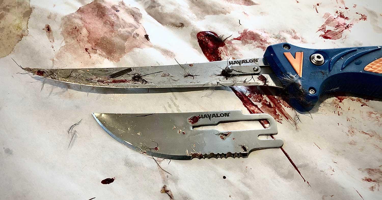 Havalon Talon carving knife.