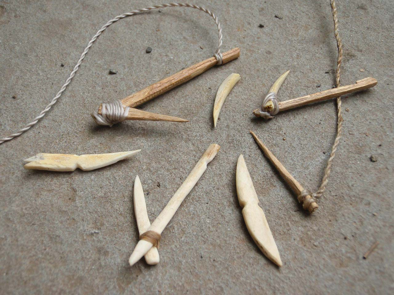 Primitive fish hooks made from wood and rocks.