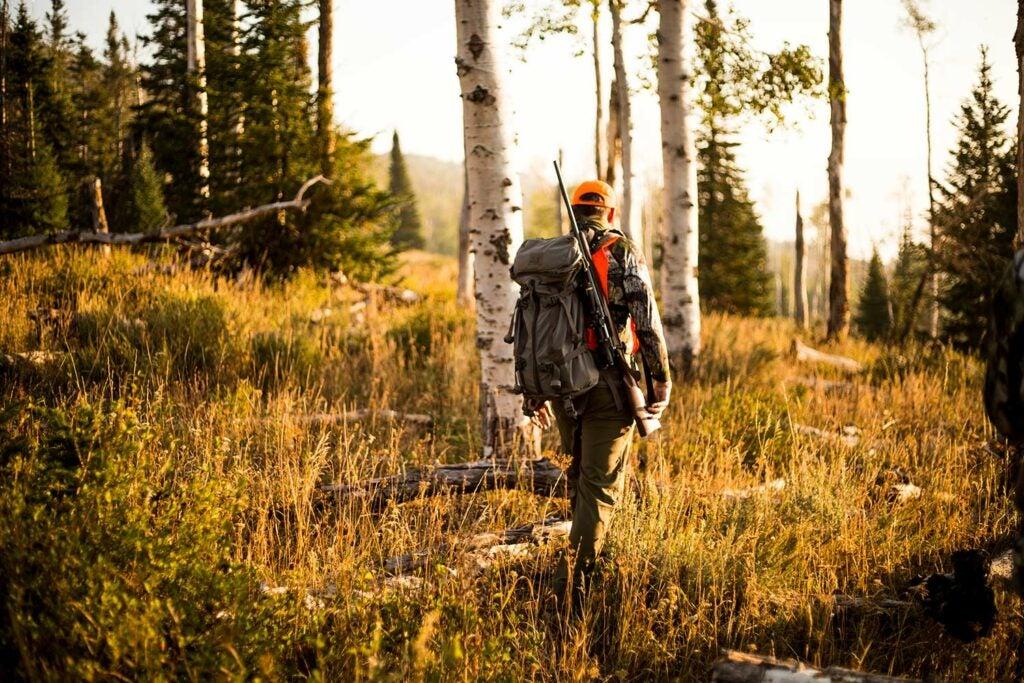 A hunter walks through the woods.