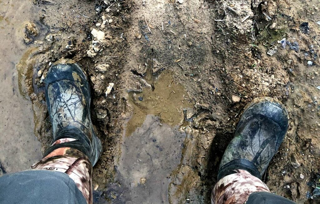 A hunters boots and turkey tracks in the mud.