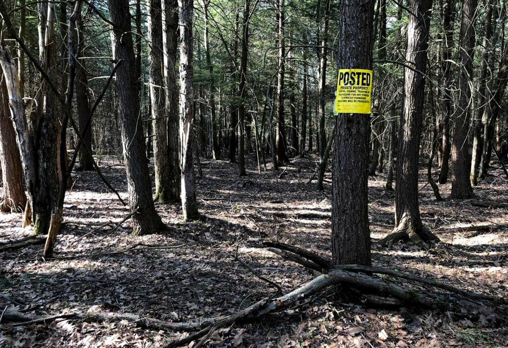 Landscape photograph of a forest with a private property sign hanging on a tree.
