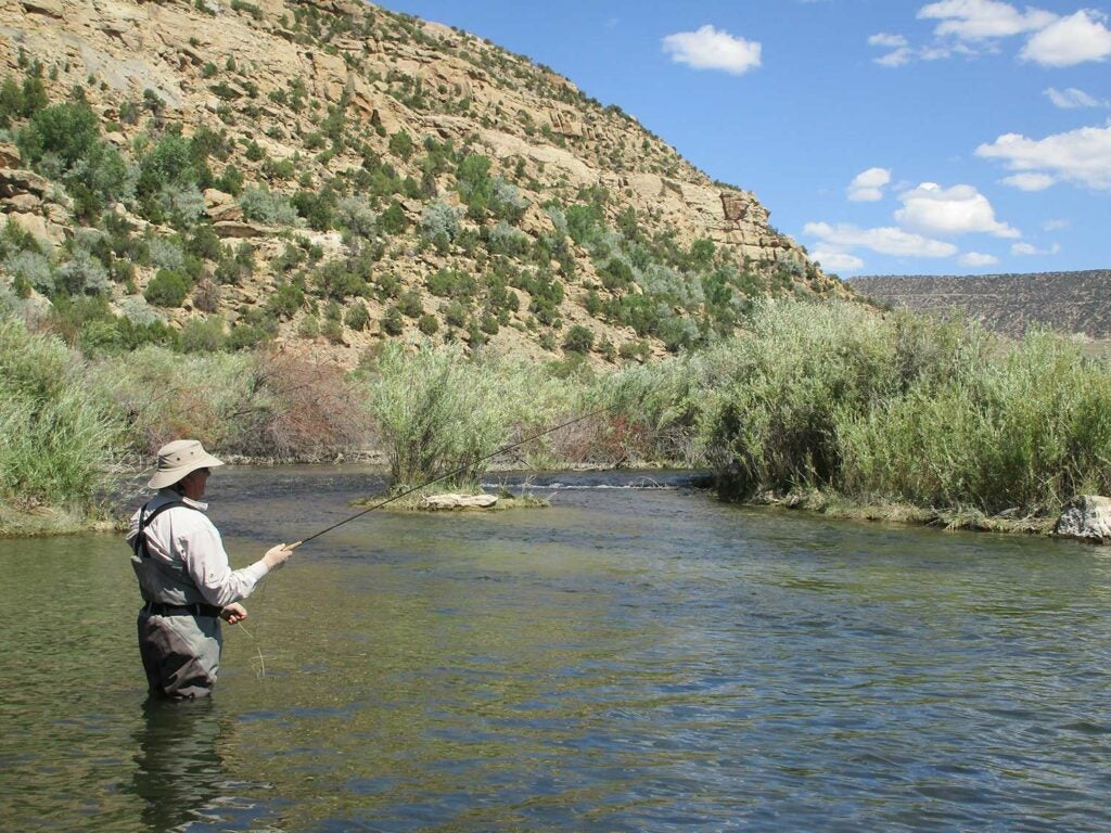 An angler wading in the San Juan River.