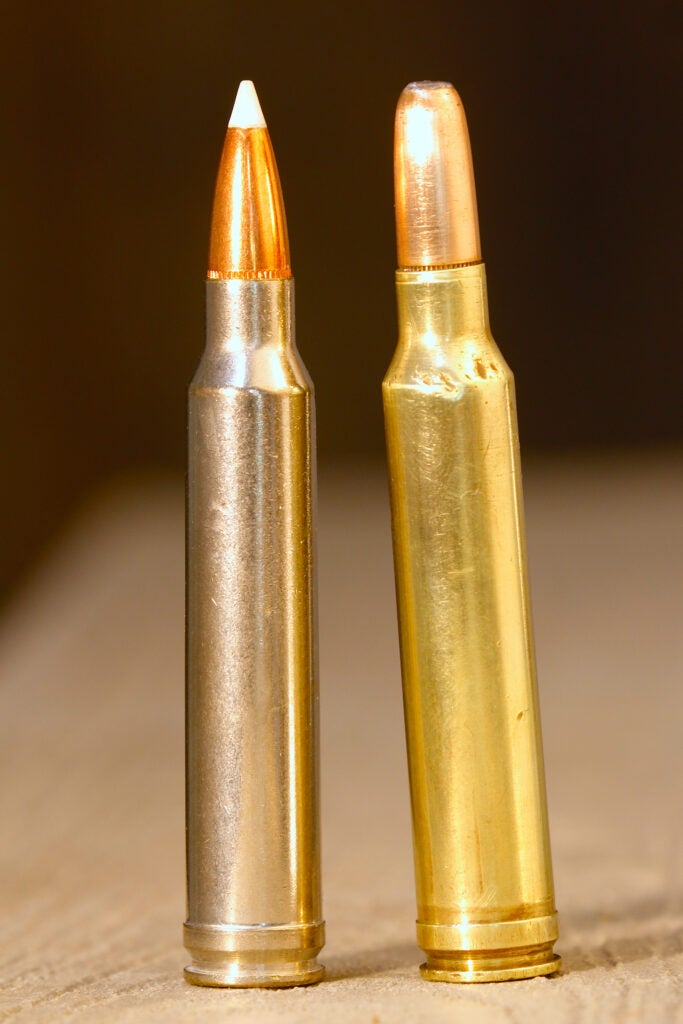 A .300 Win Mag bullet with Nosler Accubond and a Round Nose bullet.