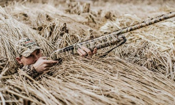 6 Tips for Becoming a Crack Shot with Your Shotgun Inside 40 Yards