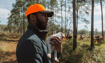 The Tale of Jake and Belle: A Hunting Dog Story You Haven't Heard Before