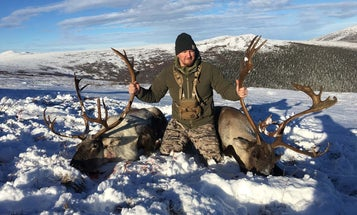 Planning to Hunt Alaska Someday? Here's Why Caribou Should Be Your First Trip