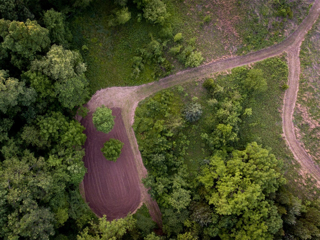 An aerial view of a deer hunting food plot.