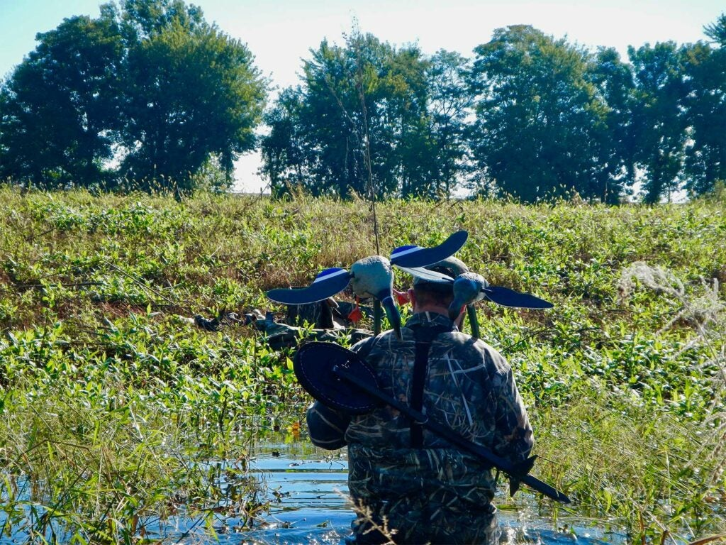 A duck hunter wading through waters to set decoys.