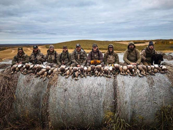 A group of hunters with limits of puddle duck sitting on hay bales.