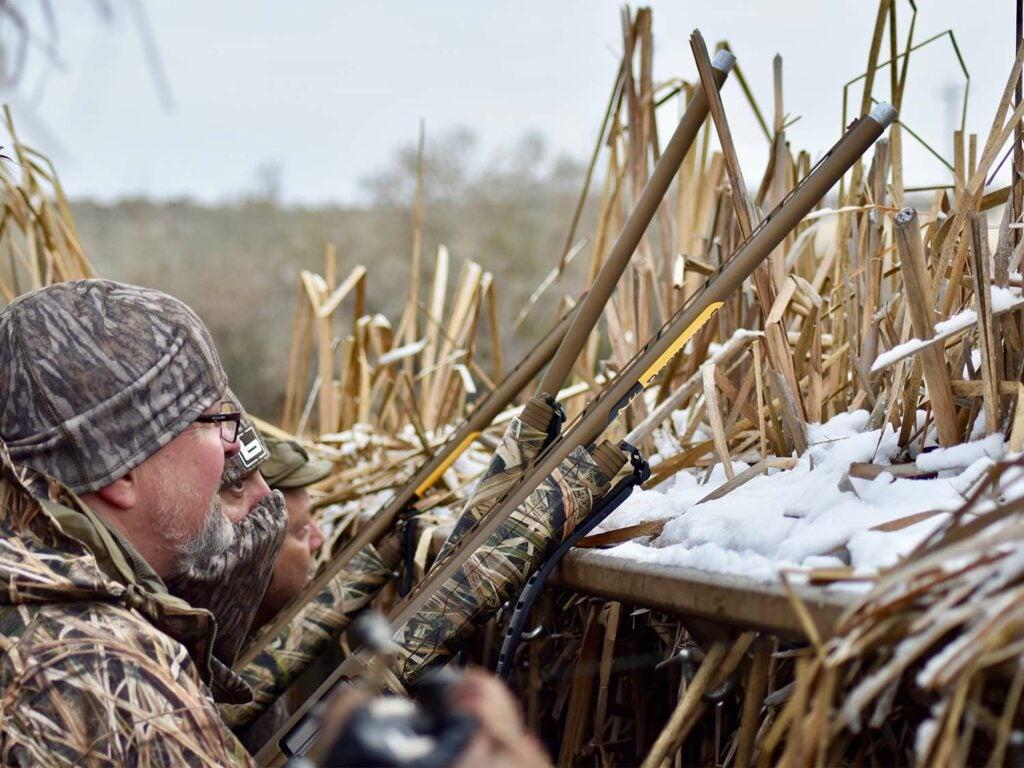 A duck hunter in a duck blind aims his shotgun in the air.