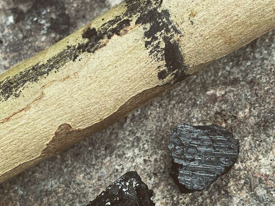 A limb of wood marked with lines made from charcoal.