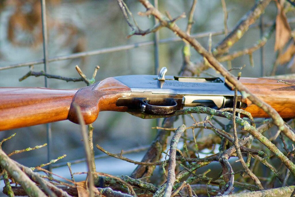 A Browning Double Auto shotgun amgon branches and twigs.