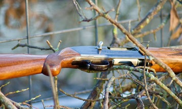 9 of the Most Underrated Semi-Auto Shotguns of All Time