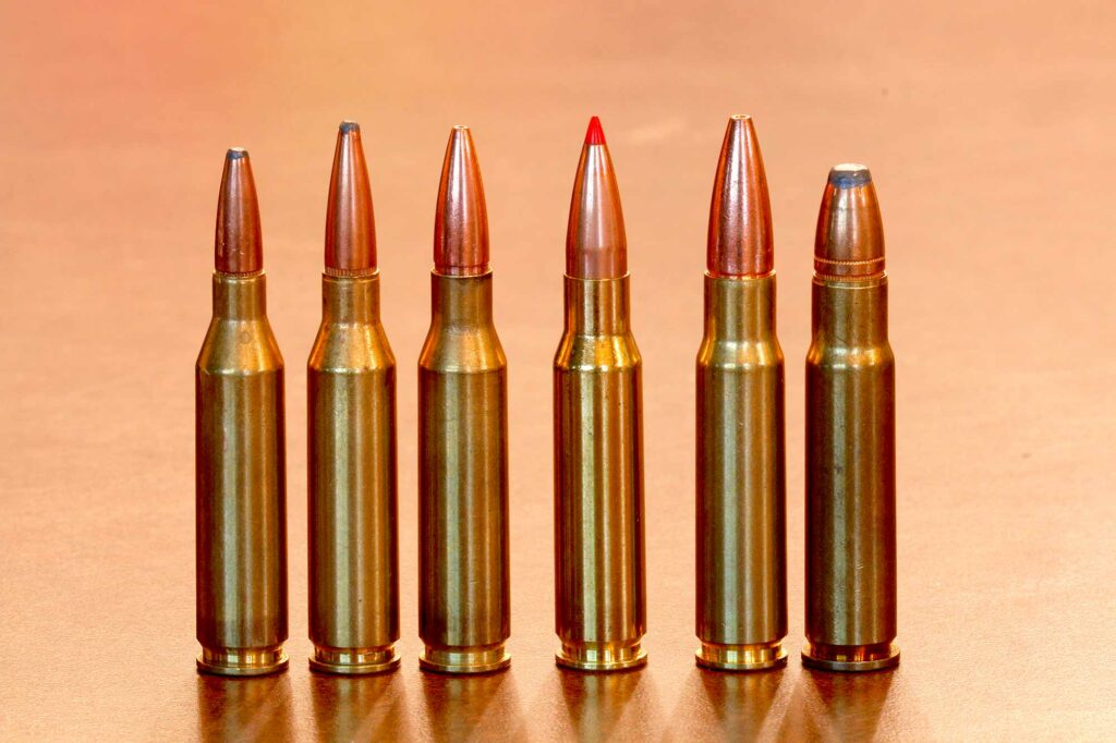 The .308 family of cartridges