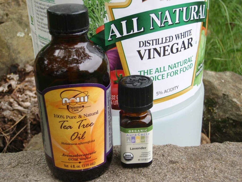 Bottles of vinegar and insect repellent ingredients.