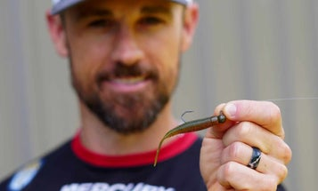 3 Steps to Catching Bass on a Ned Rig