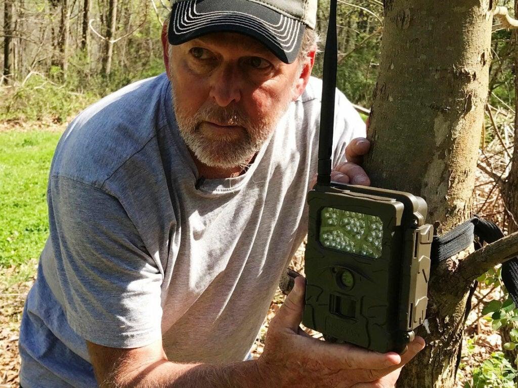 A hunter installs a trail camera on a tree.