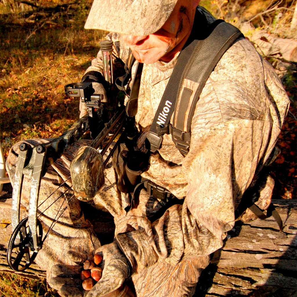 A hunter holding a compound bow examies a handful of acorns.