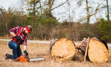 Essentials for chainsaw safety