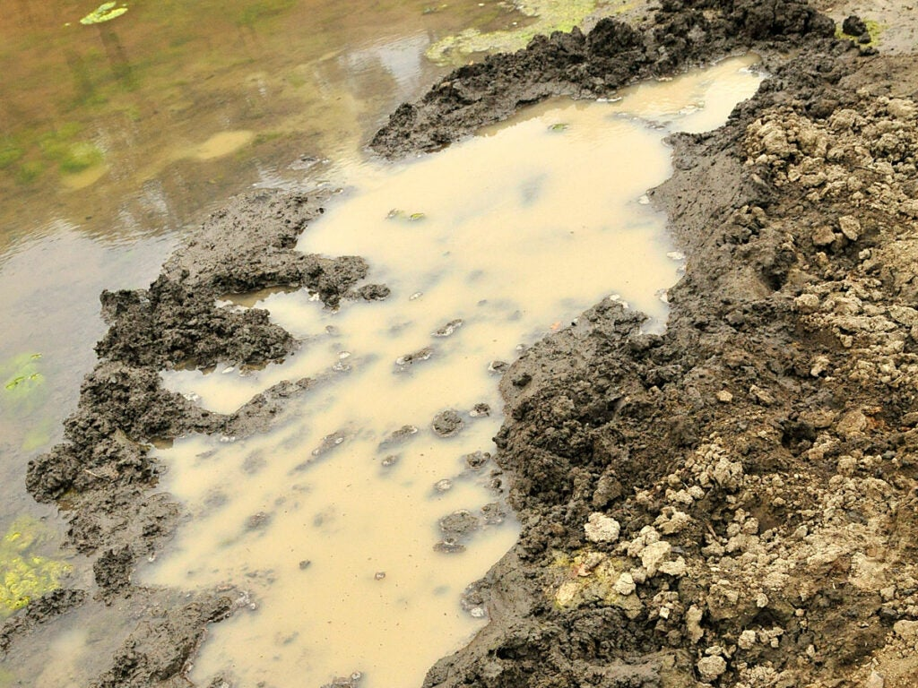 A mud puddle