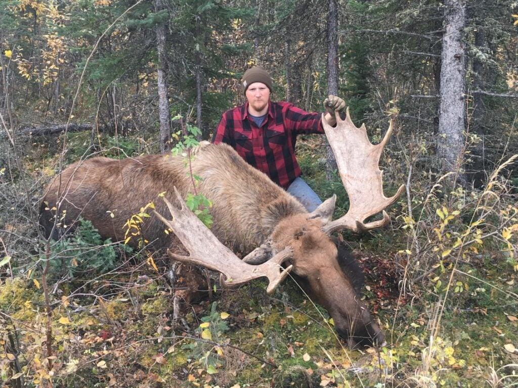 A hunter kneeling behind a large moose.