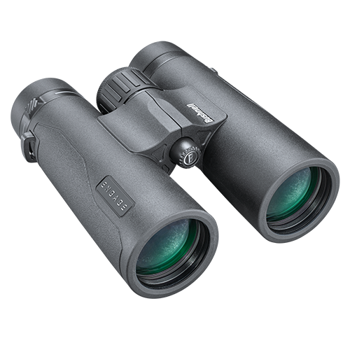 A pair of grey binoculars on a white background.