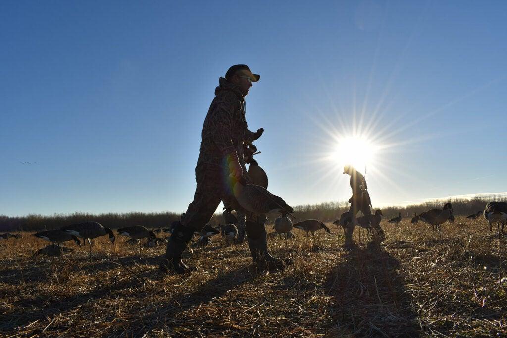 A hunter walking through an open field.