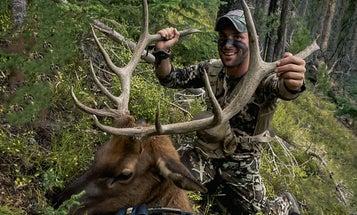 The Everyman's Approach to DIY Archery Elk Hunting