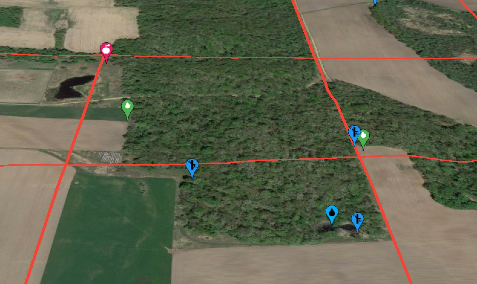 Satellite image of agricultural fields and timber with waypoints and red property line grids.