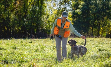 8 Drills to Do Right Now to Get Your Gun Dog Ready for Fall