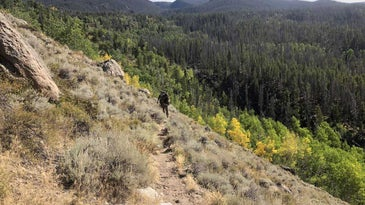 An elk hunter practicing steps on a hillside in a heavily forested area.